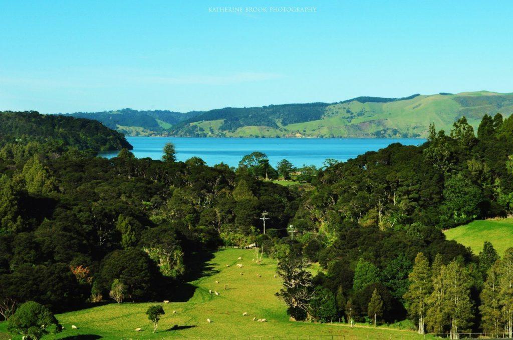 Где снимали Властелин колец? Тур по Новой Зеландии